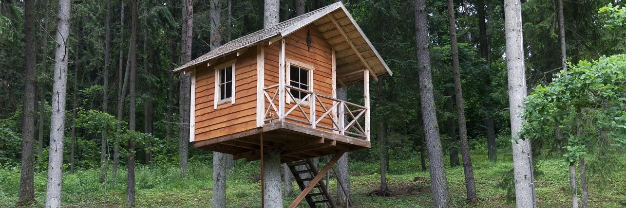 Trina caba as en los rboles los mejores alojamientos for Alojamientos cabanas en los arboles
